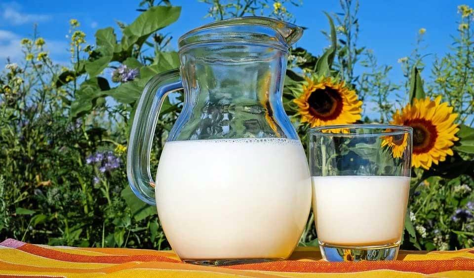 razones-para-evitar-la-leche 10 razones para evitar la leche y los lácteos